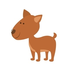 Pet dog icon image vector