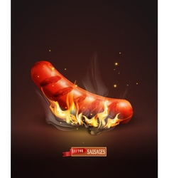 sausage roasted on coals and fire on the dark back vector image