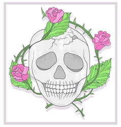 Skull and roses vector image