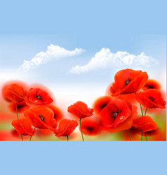 summer nature background with red poppy flowers vector image