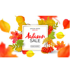 Banner for autumn sale in frame from leaves vector