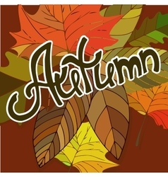 Colorful autumn background Hand drawn doodles vector