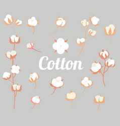 Cotton plant flower in a flat style isolated on vector