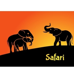 Elephants safari concept vector image