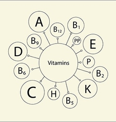 Essential vitamins vector image