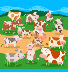 Flock of cows farm animal characters group vector