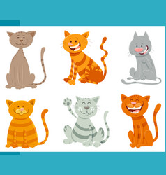 Funny cats and kittens animal characters set vector