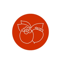 Icon Persimmon in the Contours vector