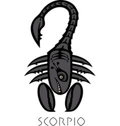 Image scorpio astrological sign zodiac vector