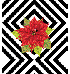 poinsettia on black stripes vector image