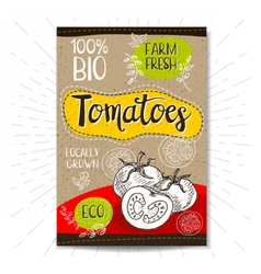 Set of hand drawn labels food spices vector image