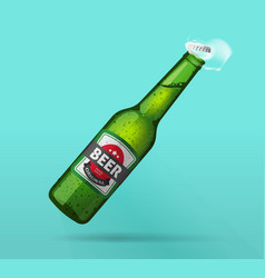 beer bottle open green glass bottle opened cold vector image