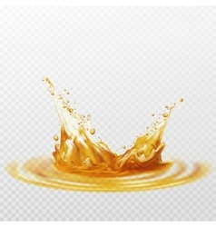 Beer foam splash of white and yellow color vector