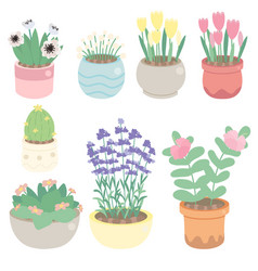 cute tiny flower in pot collection vector image