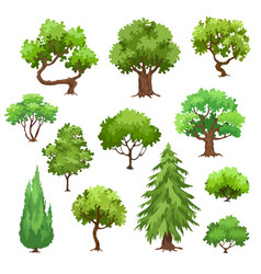 Green trees collection vector