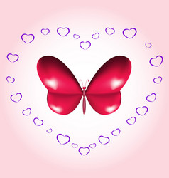 heart butterfly card vector image