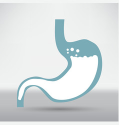 human stomach symbol vector image