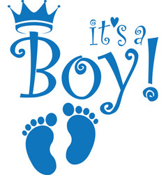 its a boy banner vector image
