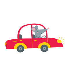 rat driving red car vector image
