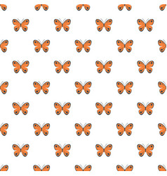 tropical butterfly pattern seamless vector image