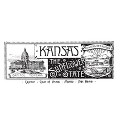 the state banner of kansas the sunflower state vector image