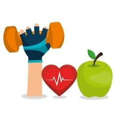 cartoon fitness sport elements design vector image