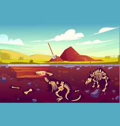 Fossil dinosaurs excavation paleontology works vector