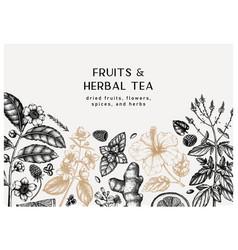 Herbal tea ingredients banner summer drinks vector