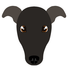 Italian greyhound avatar vector