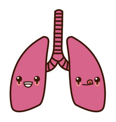 lungs human organ kawaii cartoon vector image