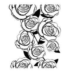 monochrome sketch of roses pattern vector image