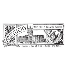 The state banner of kentucky the blue grass state vector