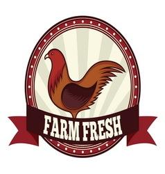 Farm fresh chicken resize vector image