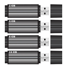 flash drive Size of vector image vector image