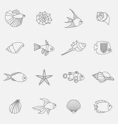 seahells and fish in isolated on white vector image vector image