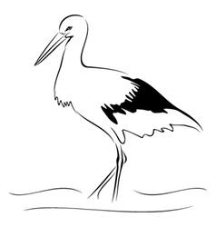 Stork on sketch vector image