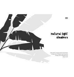 Abstract banner with black tropical leaves shadow vector