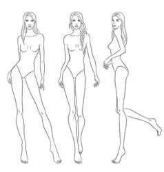 Beautiful slim women sketch vector