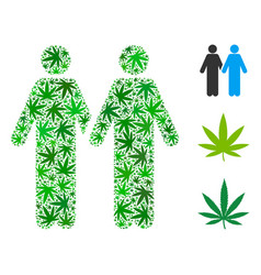 Gay pair composition of weed leaves vector