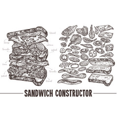 monochrome sandwich with ingredients vector image