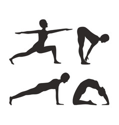 yoga and fitness activities vector image