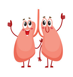 pair of cute and funny smiling human lung vector image vector image