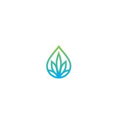 droplet green leaf nature logo vector image