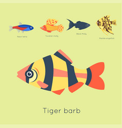 Exotic tropical fish different colors underwater vector
