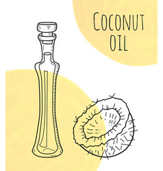 Hand drawn coconut oil bottle with creme vector