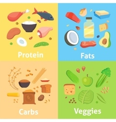 Healthy nutrition proteins fats carbohydrates vector