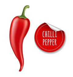 hot chilli pepper vector image