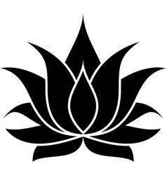 Lotus set 001 vector