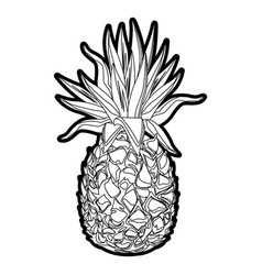 pineapple tropical fruit tasty outline vector image
