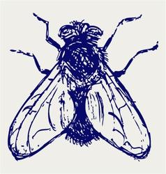 Black flies vector image vector image